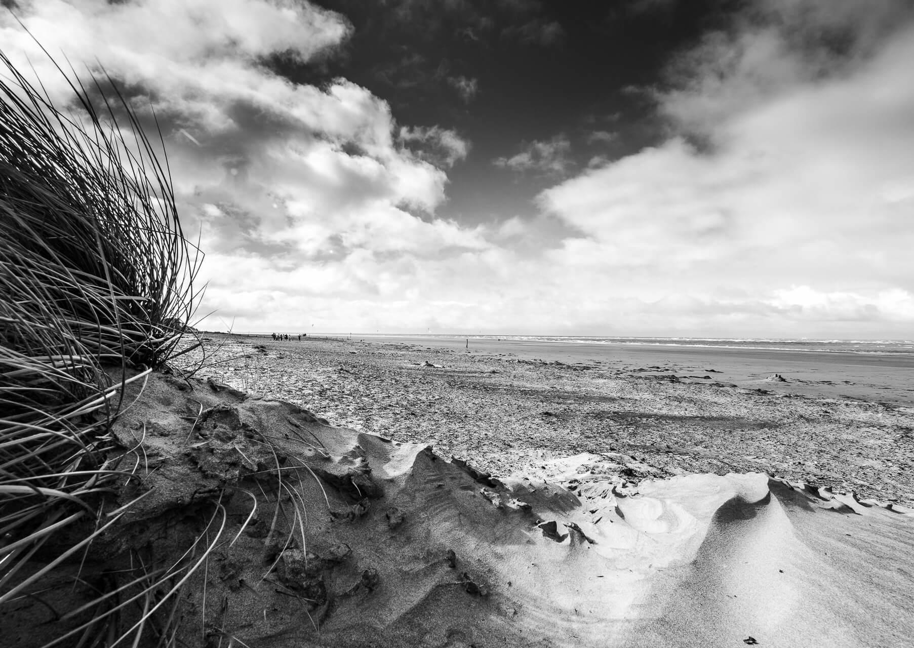 Mini Dunes - a black and white landscape print taken at West Wittering Beach in Sussex in 2020