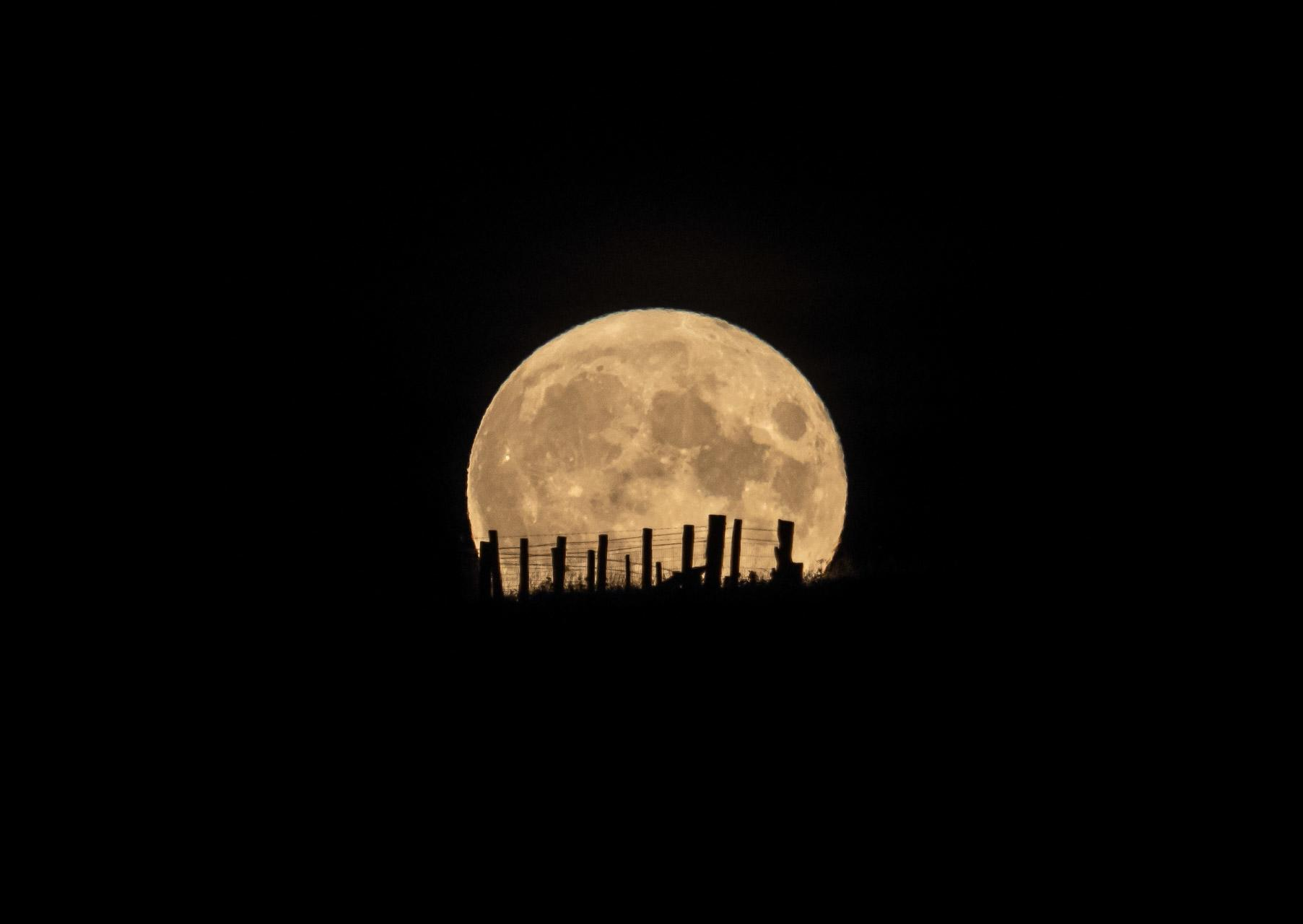 Full moon rising - a wall art print from Northwall Gallery