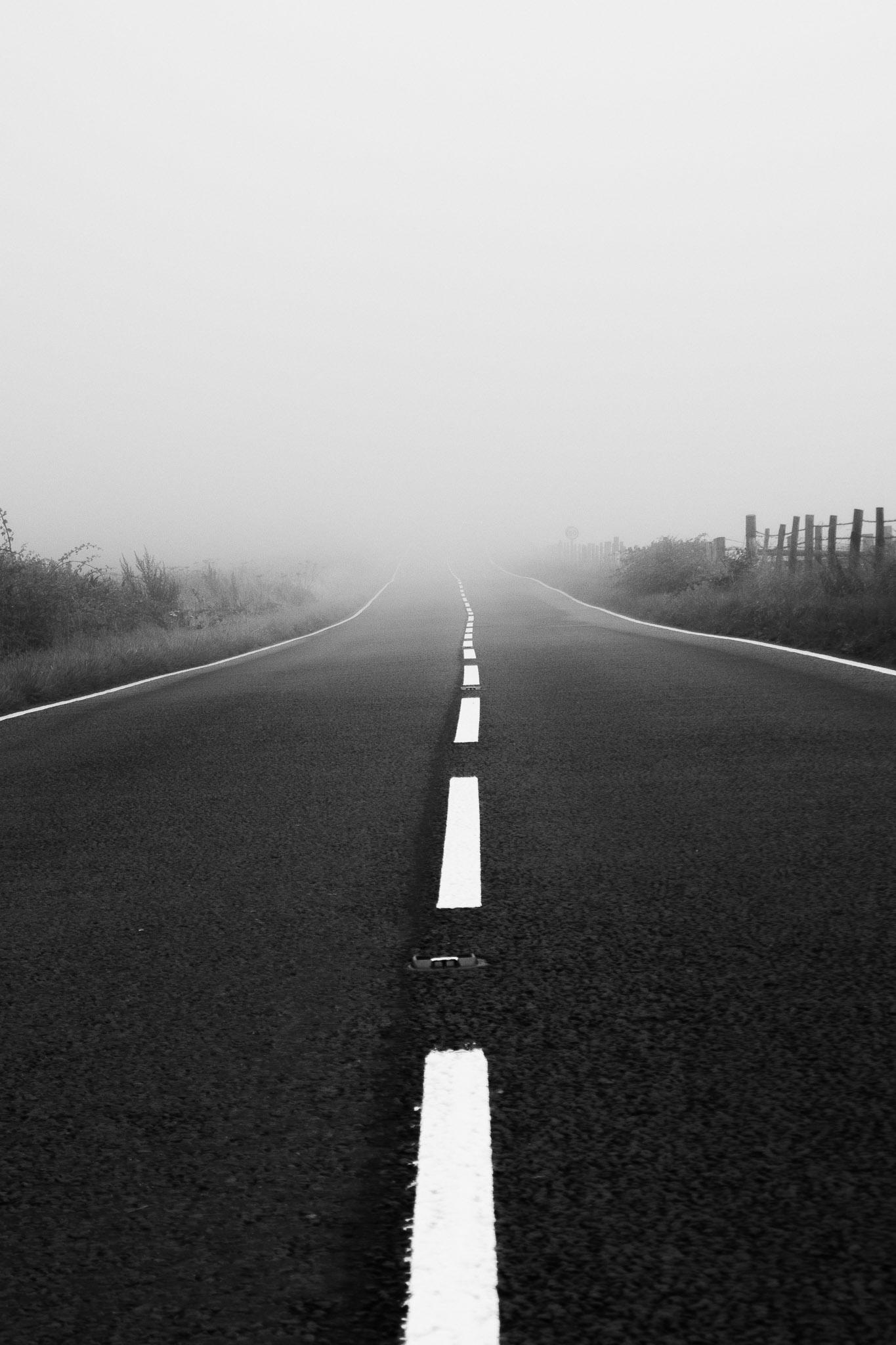 Into The Mist Black and White Wall Art Print