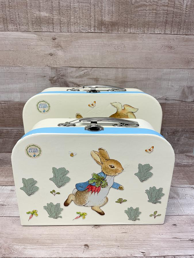 SET OF TWO PETER RABBIT CARD STORAGE CAESES WITH METAL HANDLE07-03-2021 at 11.33.54 2.JPG
