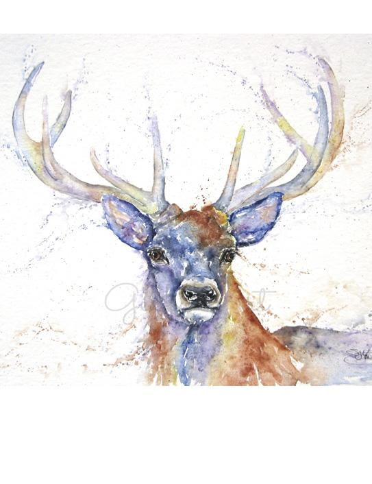 stag watercolour