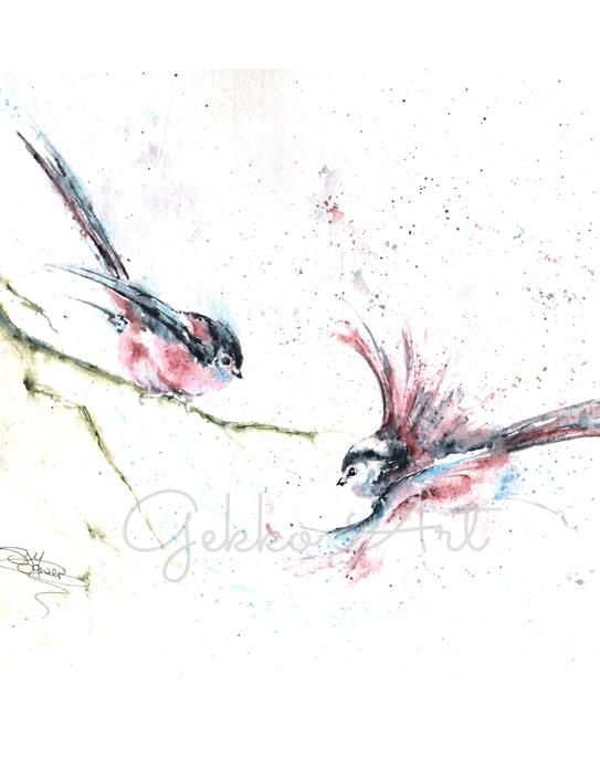 birds watercolour