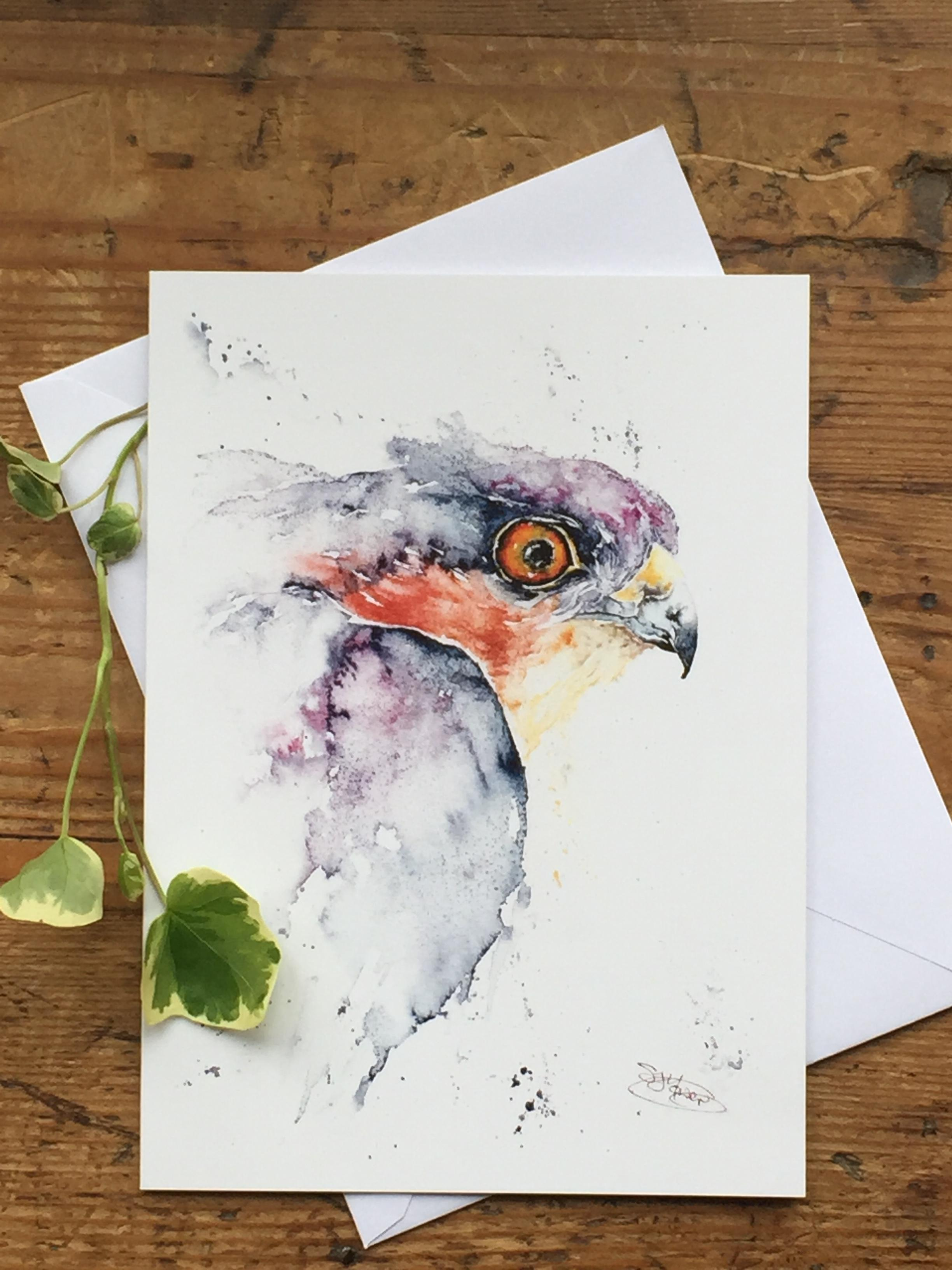 sparrowhawk card