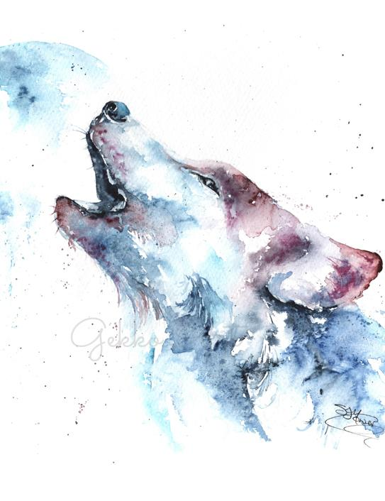 wolf watercolour