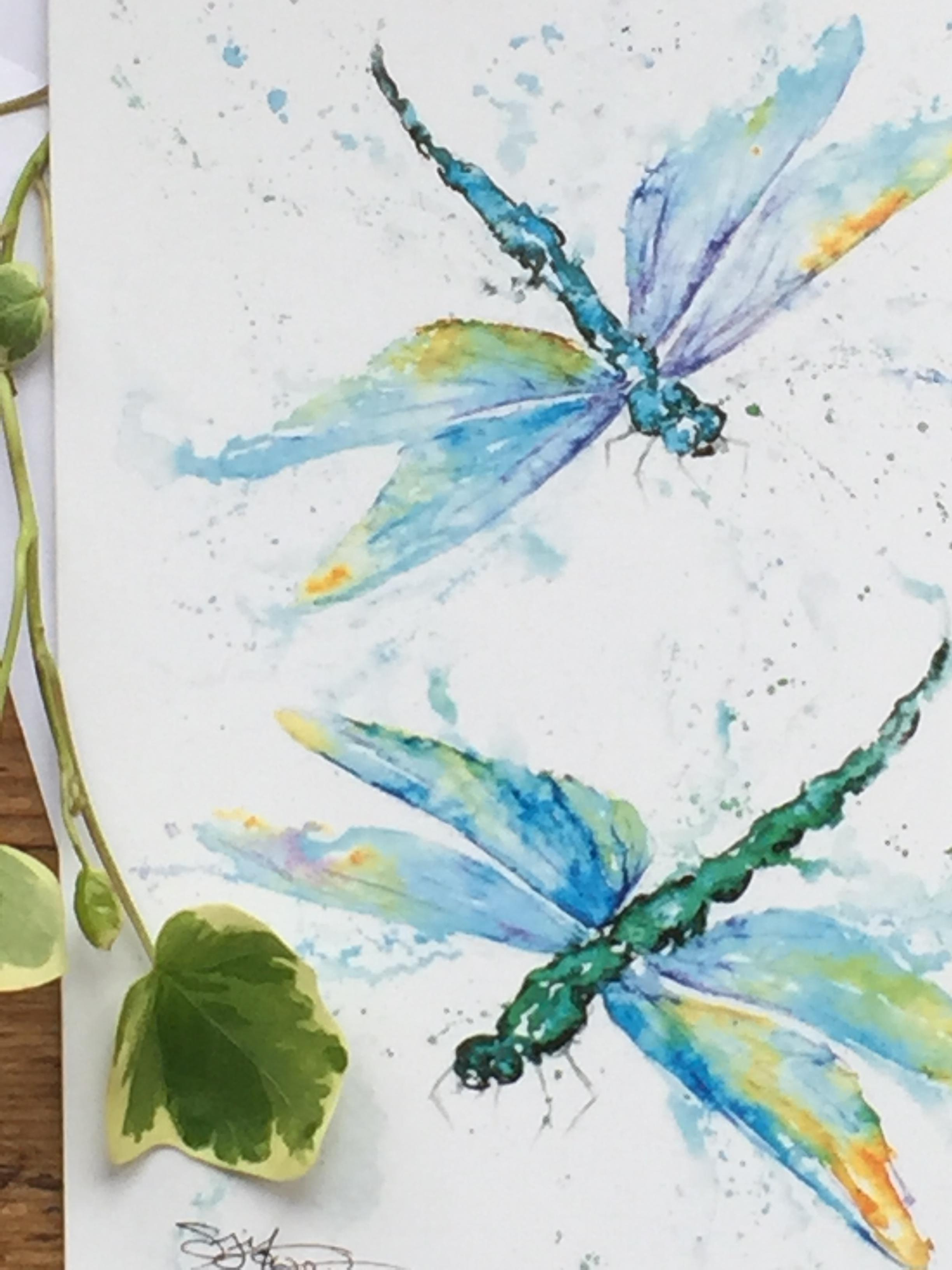 dragonflies watercolour painting
