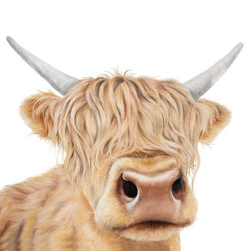 highland cow themed gifts, highland cow gift, highland cow gifts uk, highland cow gift ideas, highland cow merchandise