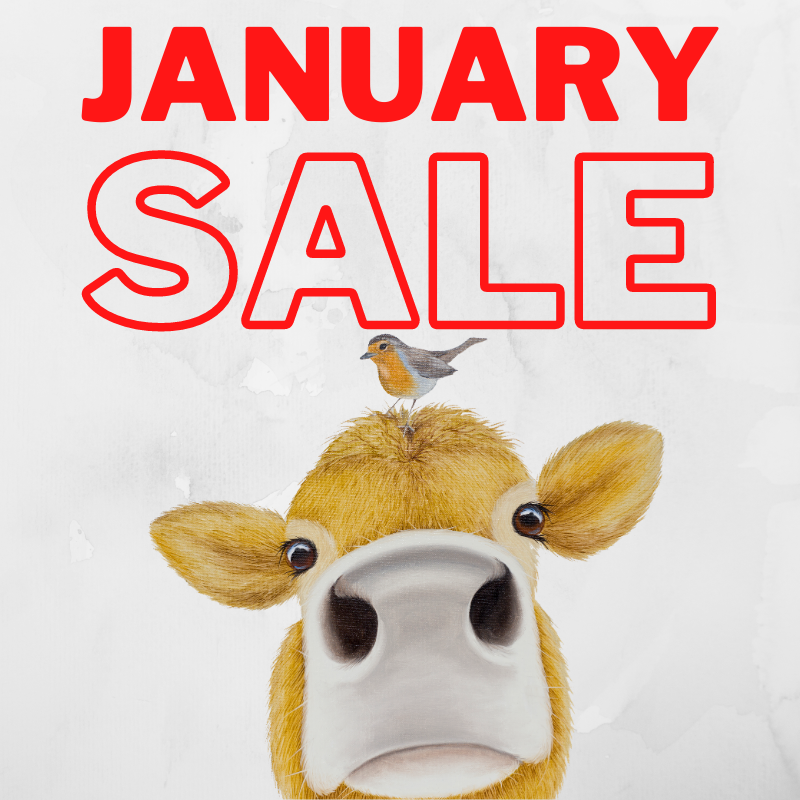 Don't miss the last week of our January Sale!