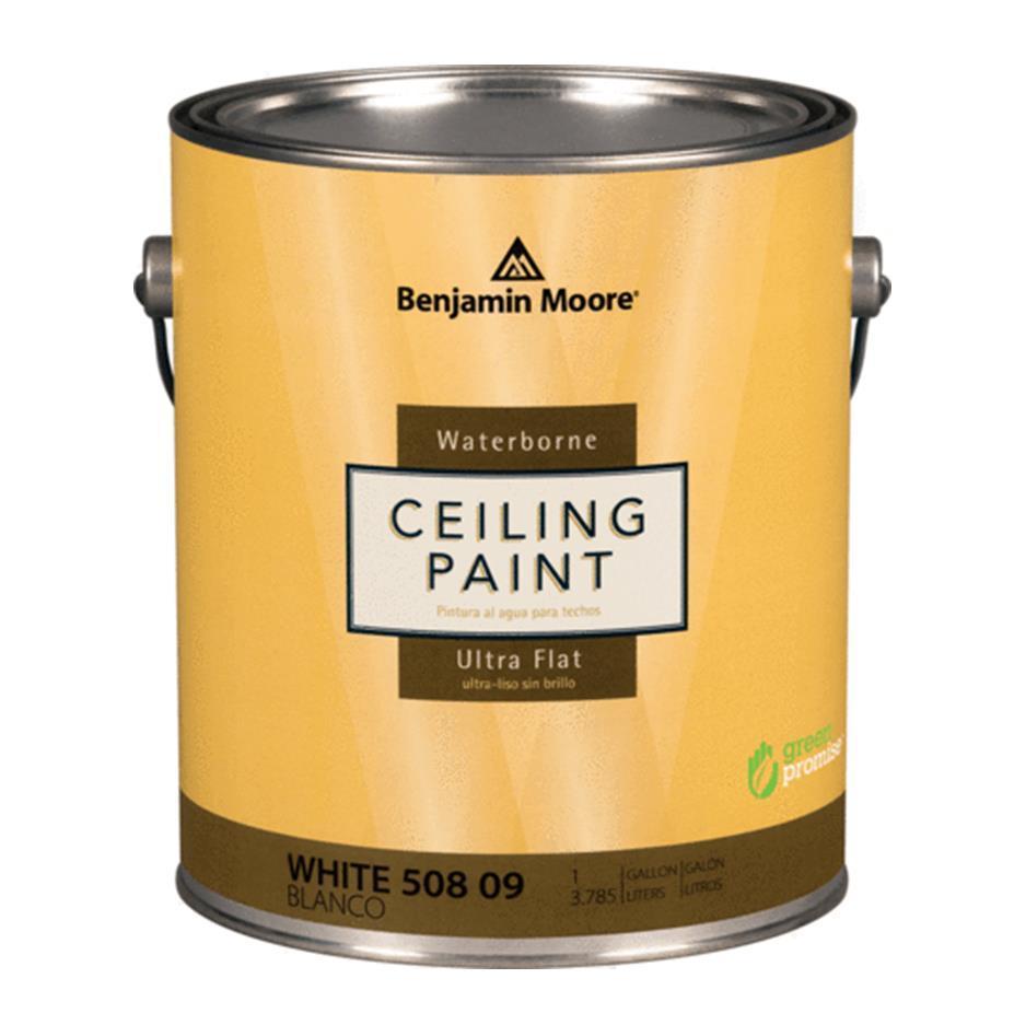 benjamin moore ceiling paint. Black Bedroom Furniture Sets. Home Design Ideas