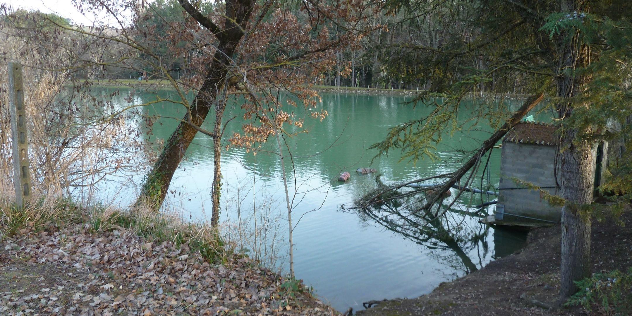marco merli lake