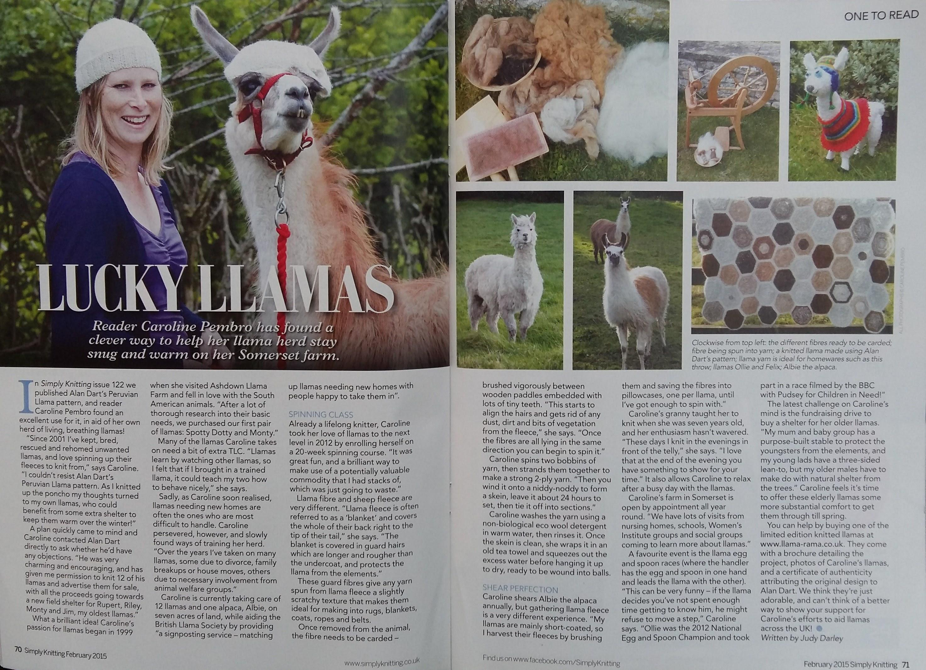 A flattering, double page articel by Judy Darley.  Billed as the UK's No.1 knitting magazine, we were lucky enough to have had a feature written about us - how I spin and knit the llamas' fibre and how I fundraised by selling knitted llamas.