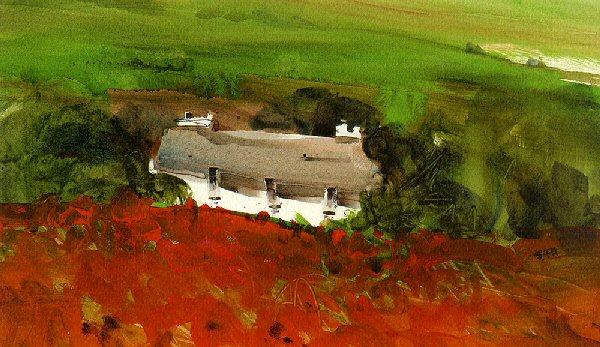 Poppy Field by Sue Howells - art print
