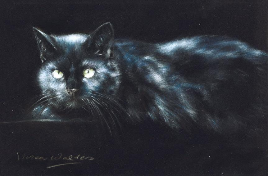 Black Magic by Vivien Walters - Limited Edition cat art print - VWE004
