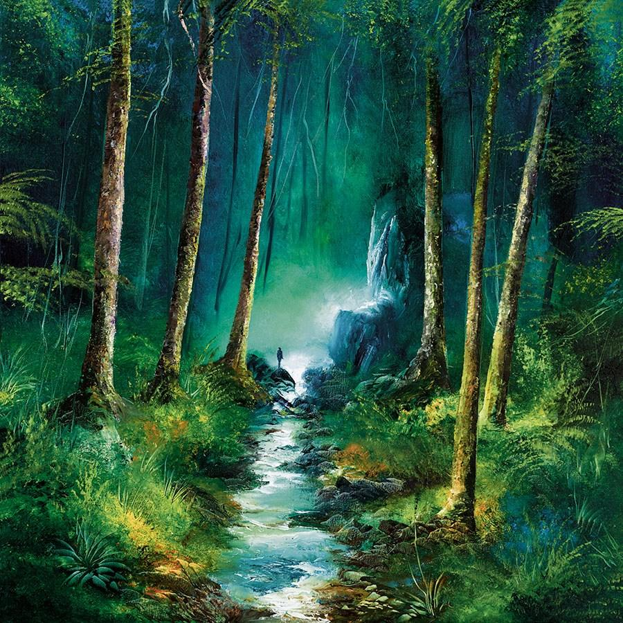 Forest of Light by Philip Gray - canvas landscape art print ZGRP082