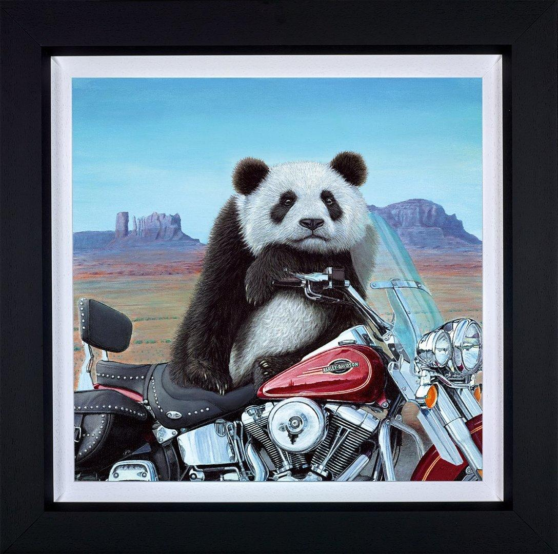 Born to be Wild by Steve Tandy - canvas art print TAN002