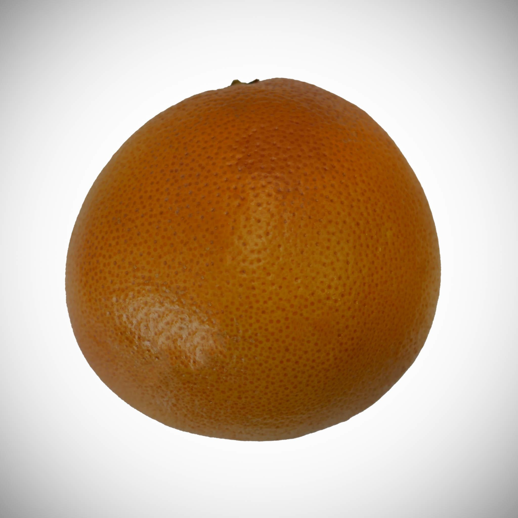 Single Grapefruit