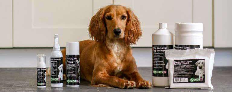 Alcohol & Bleach Free Disinfectants, Grooming & First Aid Products
