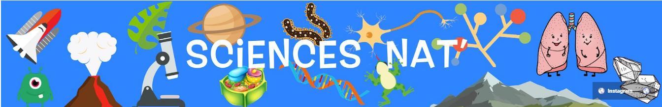 Tampons Auto-Encreurs de Sciences Nat'