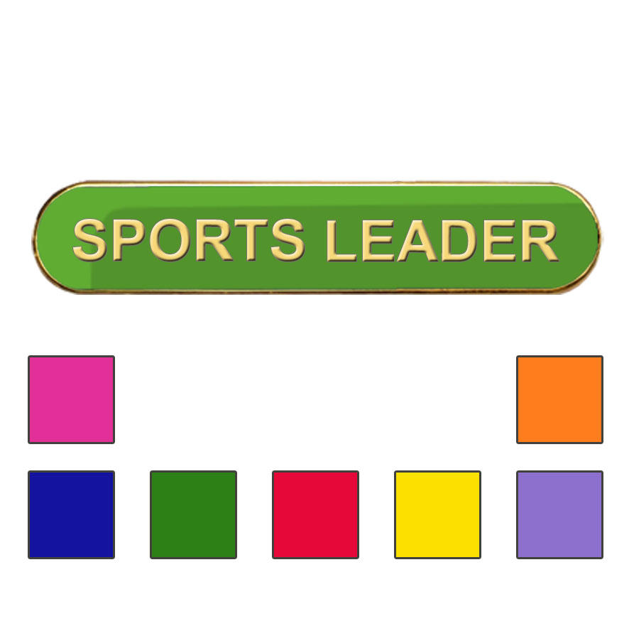 Coloured Bar Shaped Sports Leader Badges