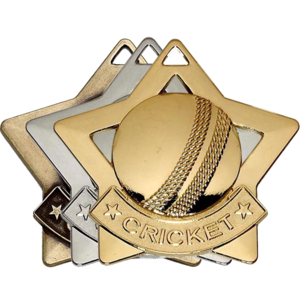 Gold, Silver, Bronze Star Shaped Cricket Badges
