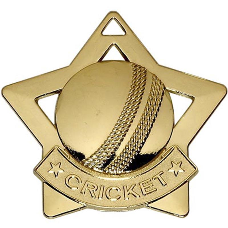Gold Cricket Star Badge