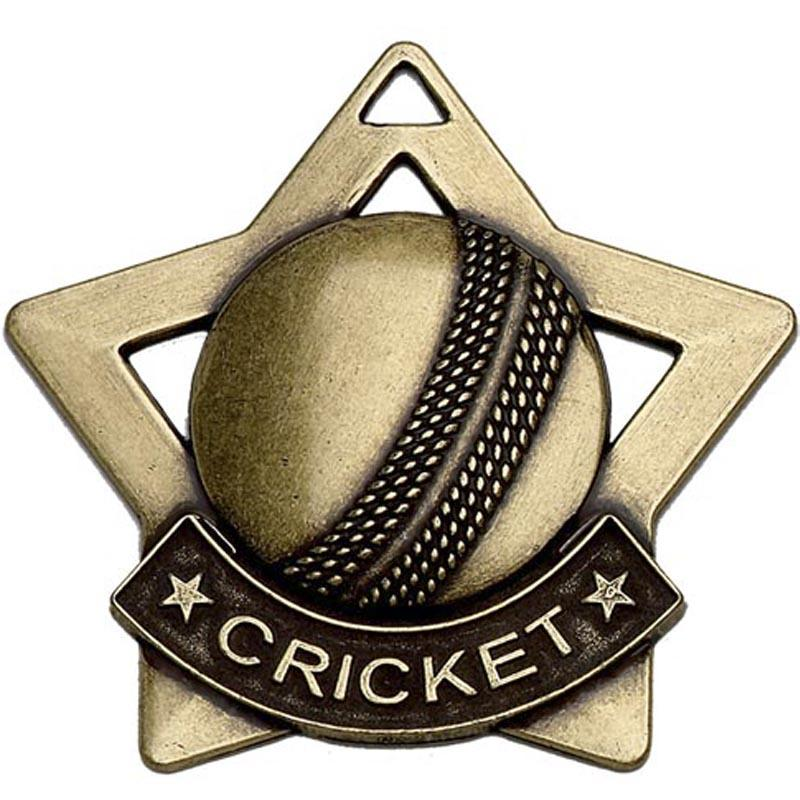 Bronze Cricket Silver Cricket Gold Cricket Star Badge Badge Badge