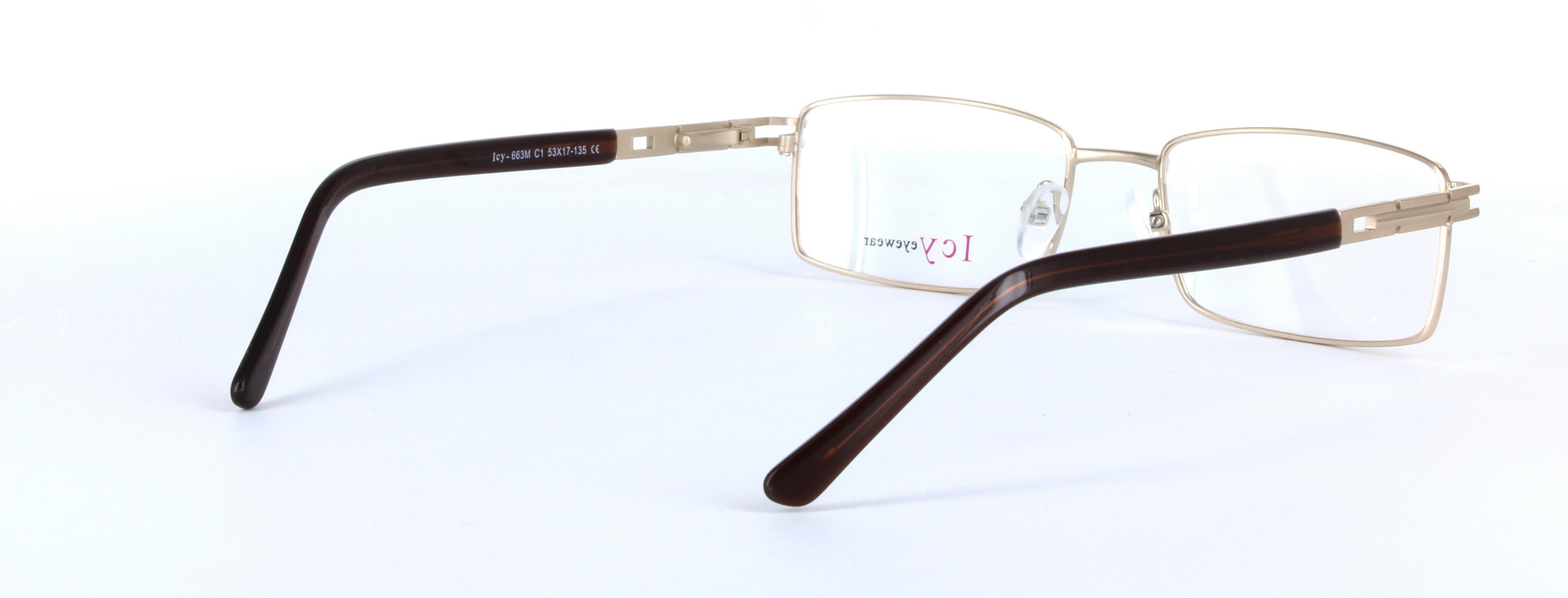 1b52d6eb0c1 Robin - Classic Metal Unisex Prescription Glasses - Gold