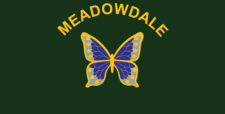 Meadowdale Primary