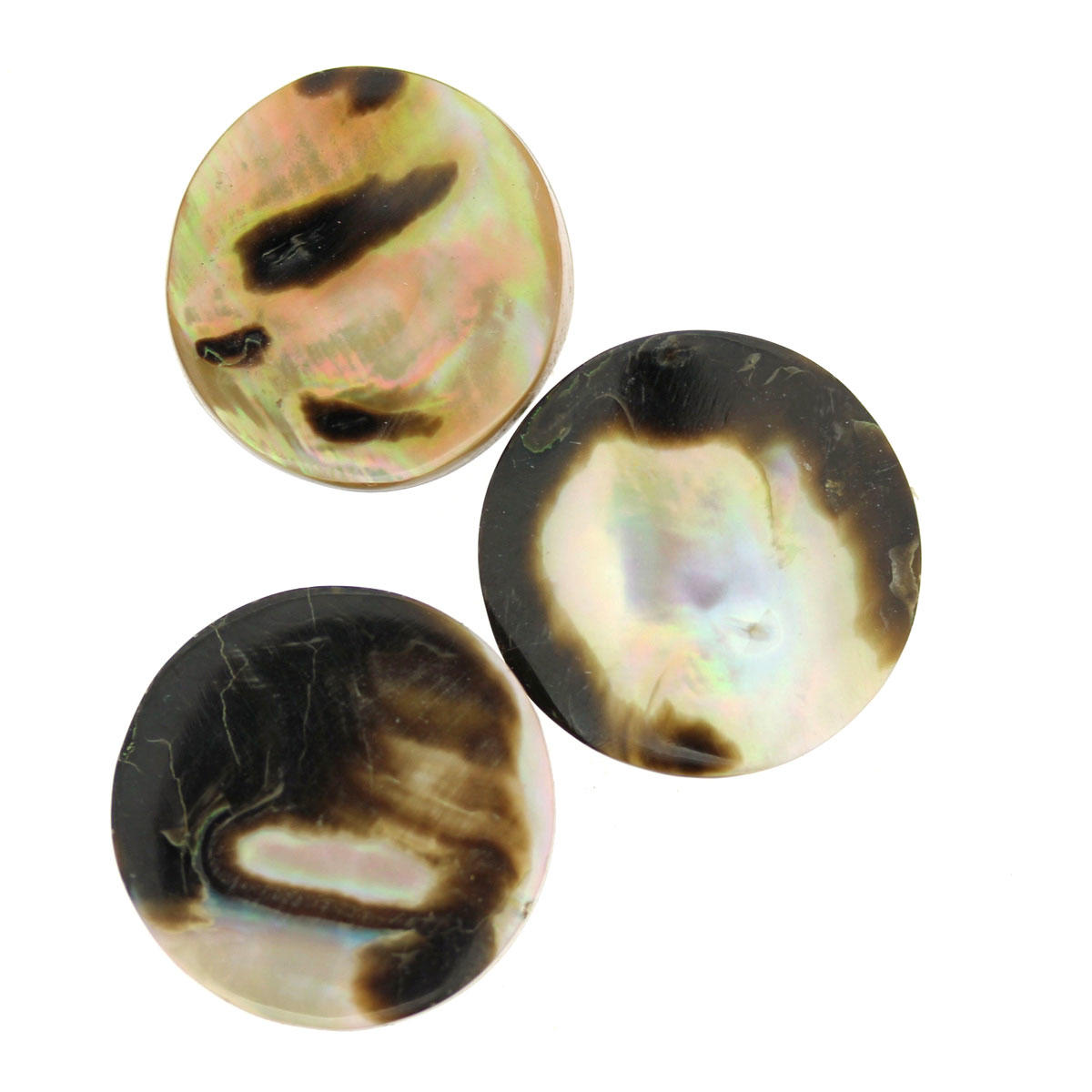 Shell Bead Coins