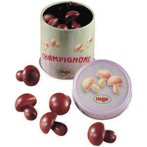 Haba mushrooms in a tin