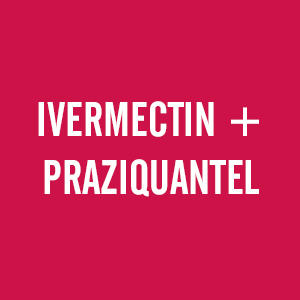 MOXIDECTIN + PRAZIQANTEL combination horsewormers