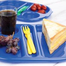 Compartment Food Trays