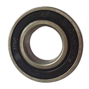Buffalo Bearing A - AD041