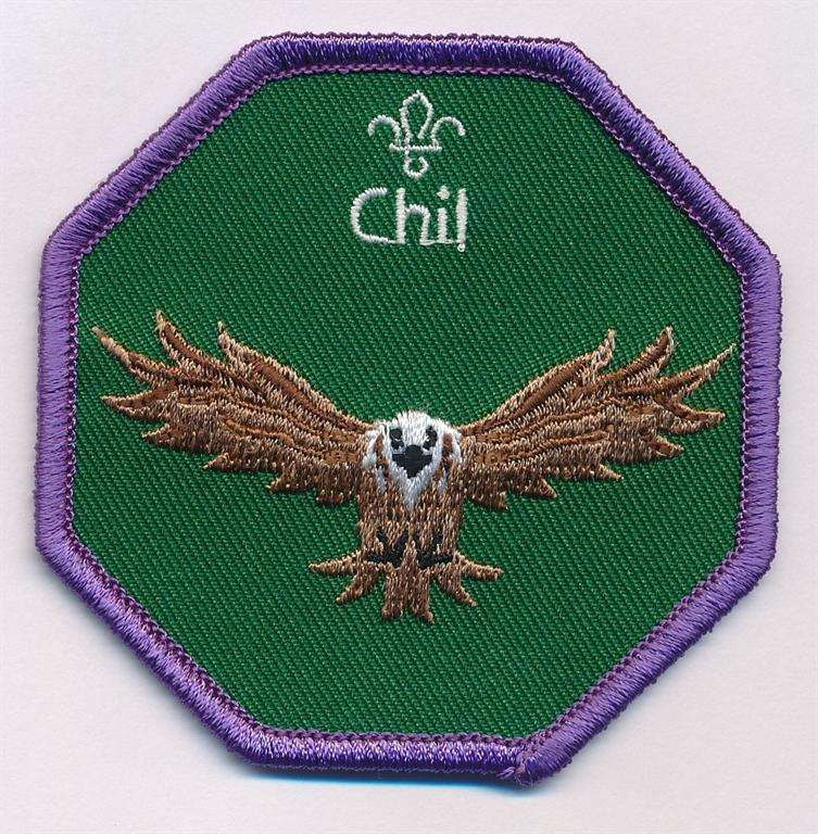 Chil Cub Scouts Fun Badge