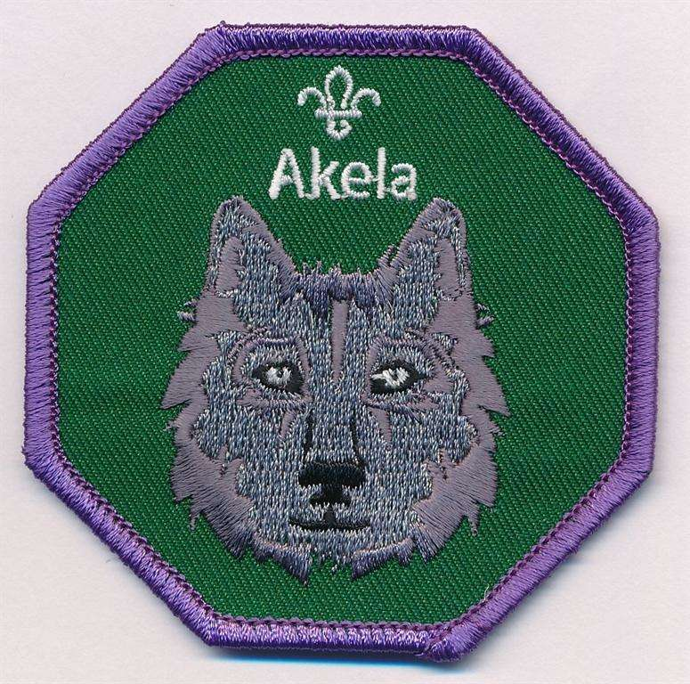 Akela Cub Scouts Fun Badge