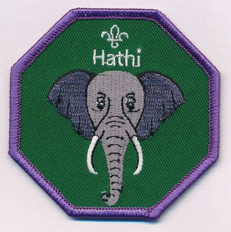 Hathi Cub Scouts Fun Badge