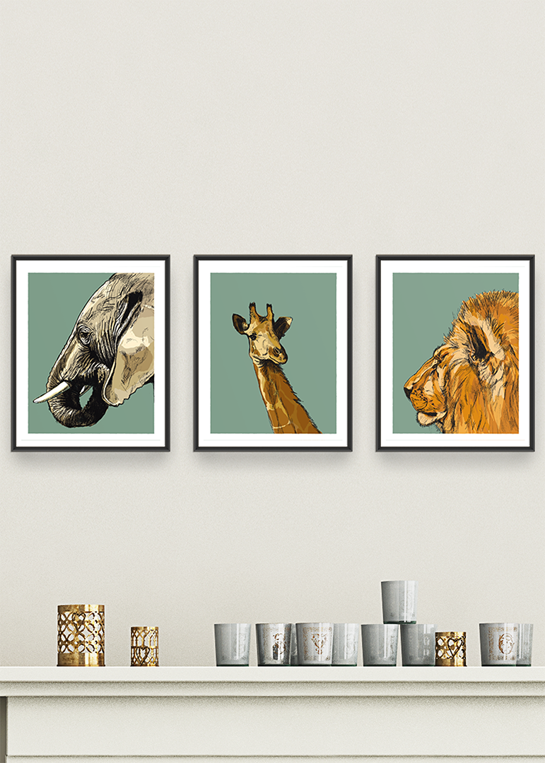 Group of three Animals of Africa prints by Tom Laird Illustration