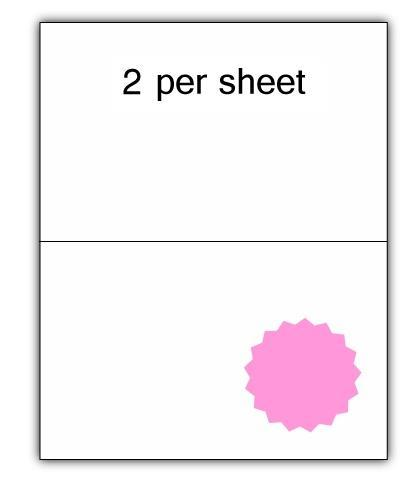 CLO2PK - A4 Label Pink 210x148.5mm 2 up (100 Sheets)