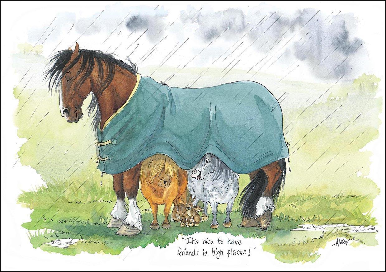 You spoil that horse by Alisons Animals