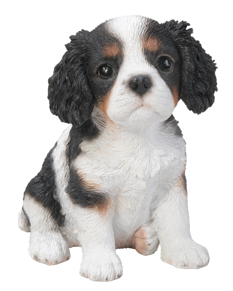 Vivid Arts Pet Pals King Charles Tricolour Puppy