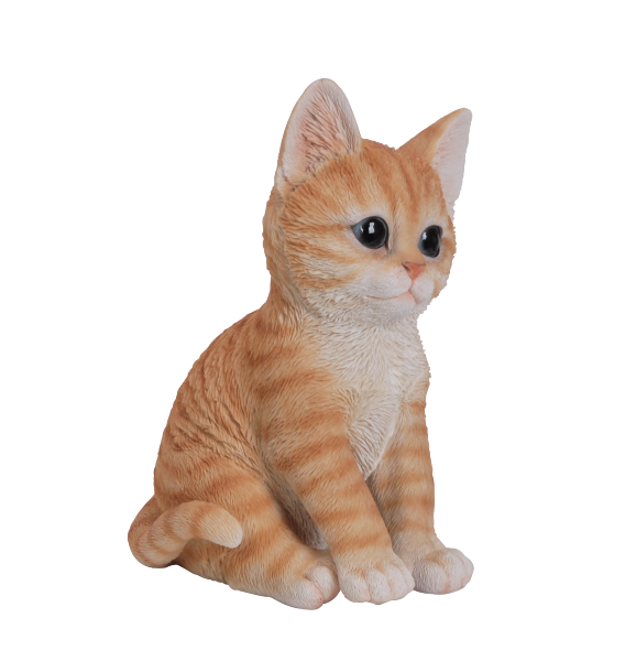 Vivid Arts Pet Pals Ginger Kitten