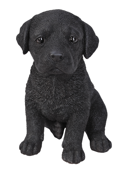 Vivid Arts Pet Pals Labrador Black Puppy