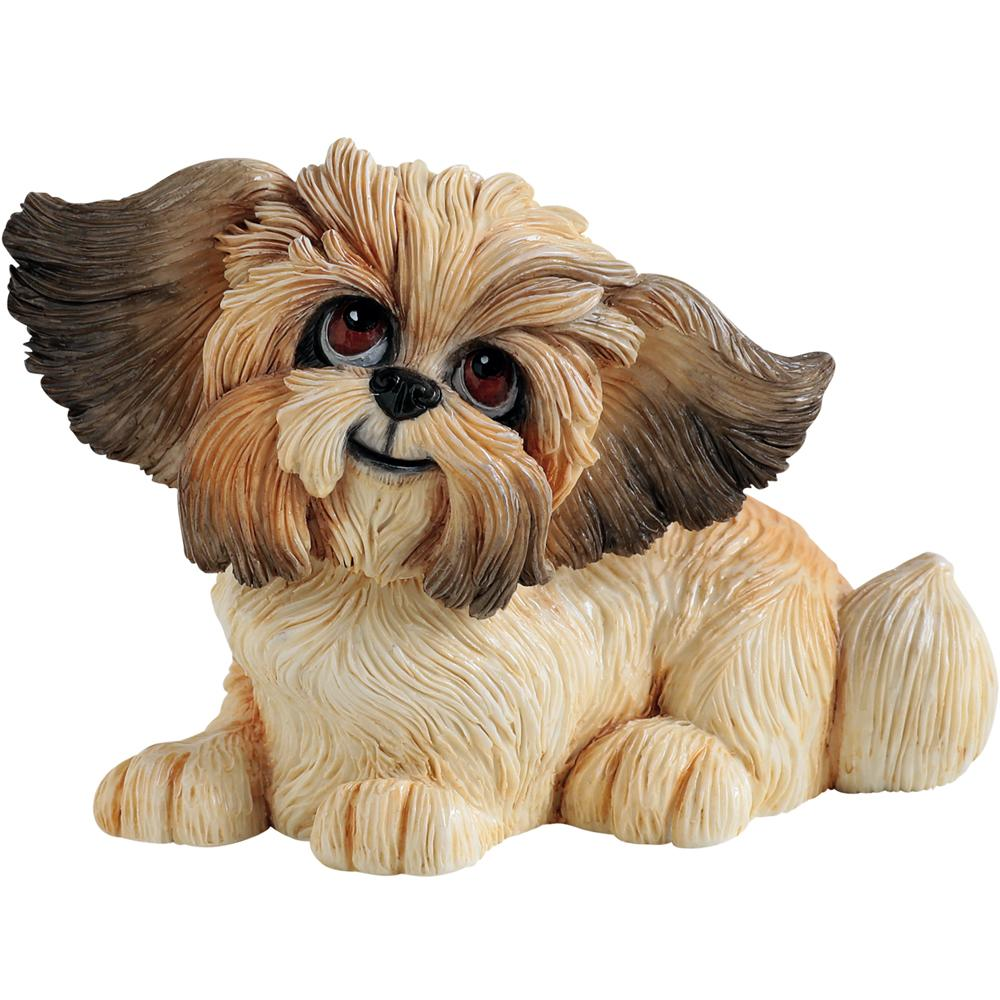 Little Paws - Gizmo the Shih Tzu
