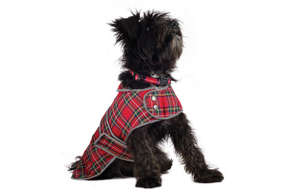Ancol Tartan Red dog coat