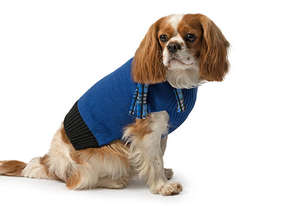 Blue Scarf Dog Jumper