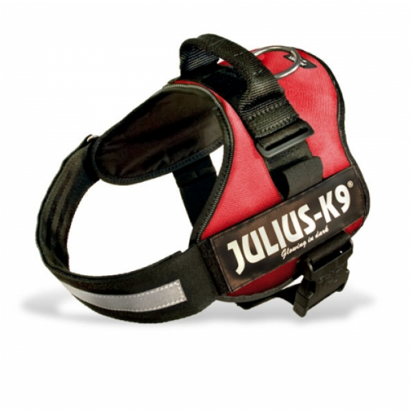 Julius K9 Harness Black, Petshop Postie