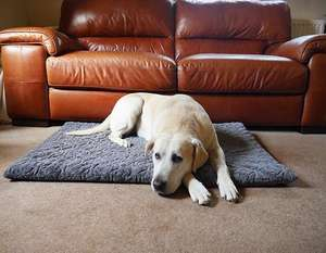 Orthopaedic Dog Mattress