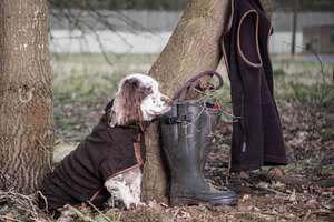 Mud coloured Ruff and tumble Drying coat