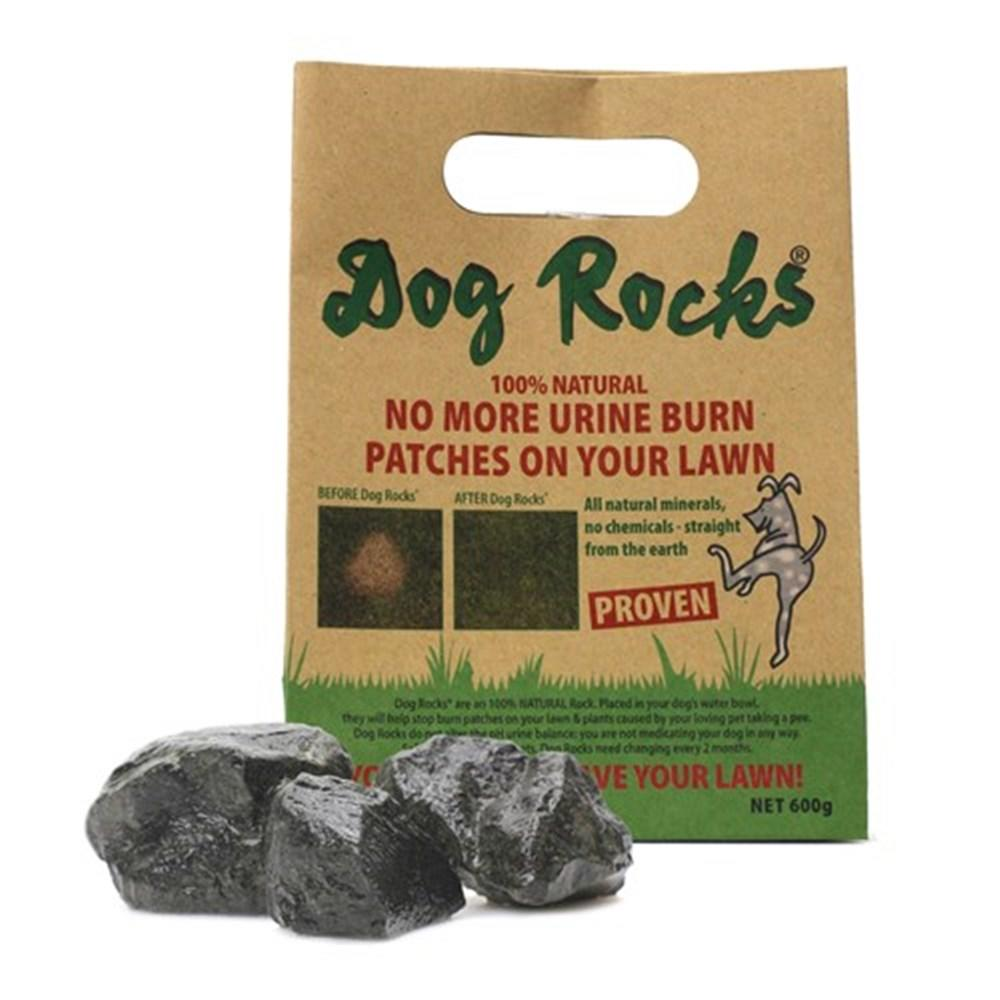 Dog Rocks Lawn Protection