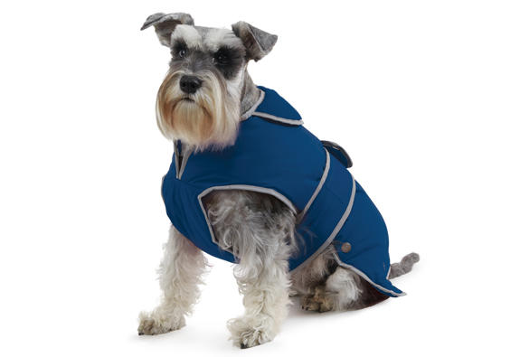 Ancol blue Stormguard dog coat