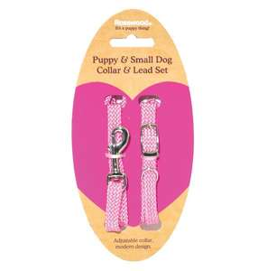 Pink Puppy collar and Lead Set